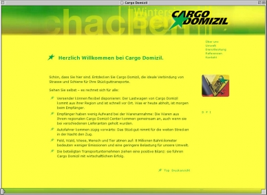 CDS Cargo Domizil AG - Website